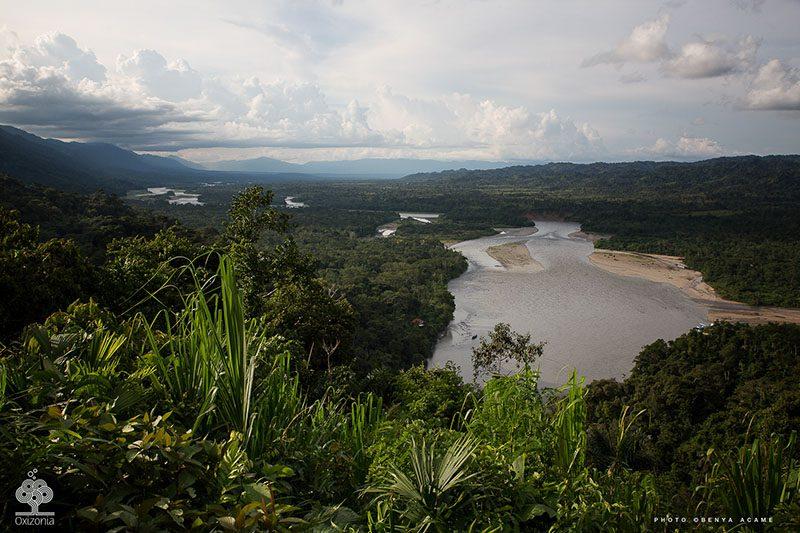10 CURIOSIDADES QUE NO SABÍAS DEL AMAZONAS 1